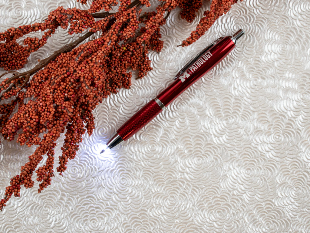Nashoba Torch metal pen with LED light, two gifts in one